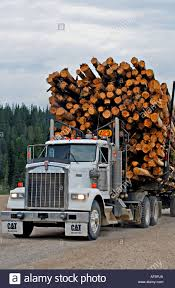 A Truck Load Of Logs Stock Photo, Royalty Free Image: 7908777 - Alamy How Much Stone Is In A Tri Axle Dump Truck Load Youtube Less Than Truckload Ltl Nationwide Carriers Shipping Litter By The Spreader Truck Load Pierce Service Filelogging With Of Saw Logsjpg Wikimedia Commons Than Companies Freight Transport Of Barrels Stock Image I3480094 At Sale For Post New Braunfels Feed Supply How To 47000 Bent Structural Steel Albina Forestry Equipment Timber Logging Vector Logs Hearthcom Forums Home Tsd Logistics Bulk Services Broker Filetruckload Palletsjpg