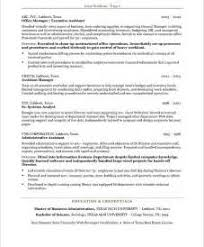 Sample Resume Executive Assistant To Ceo
