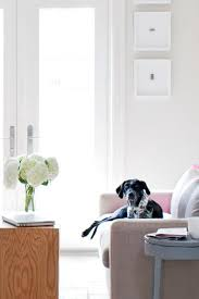 Emejing Pet Home Design Photos - Decorating Design Ideas ... Home Designs Unique Plant Stands Stylish Apartment With Cozy 12 Tips For Petfriendly Decorating Diy Ideas Awesome And Cool Dog Houses Room Simple Pet Friendly Hotel Rooms Luxury Design Modern 14 Best Renovation Images On Pinterest Indoor Cat House Houses Andflesforbreakfast My Dog House Looks Better Than Your Human Emejing Photos Mesmerizing Plans Best Idea Home Design A Hgtv Interior Comely Designing A Architectural Glass Landing
