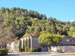 100 Creekside Apartments San Mateo Apartment Homes For Rent In Fairfax Ca Forrent Com