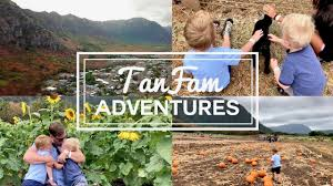 Waimanalo Pumpkin Patch Oahu by Fall Festival In Hawaii Vlog 10 Youtube