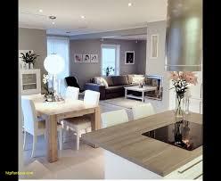 Living Room46 Room Plus Kitchen Design 50 Best In The