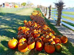 Fairs U0026 Festivals Scarecrows Pumpkins Oktoberfests Oh My by Tips For Throwing A Fall Festival
