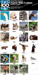 Animal Pics 5 Letters Game Solver