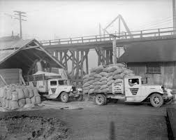 100 Coal Trucks CVA 994597 Consolidated Trucks Being Loaded With Sawdust