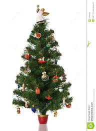 Christmas Tree 7ft by Christmas Tree On White Background Royalty Free Stock Photo