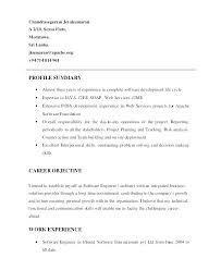 Profile Example For Resume Executive Summary Examples Lovely