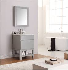 Menards Bathroom Vanities 24 Inch by Bathroom Painted Bathroom Vanity A Considerations Before Doing A