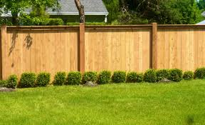 Pergola : Agreeable Backyard Walls Wall Ideas Fencing Choices For ... Backyards Cozy Dog Playground Backyard Ideas Area Yard Natural Free Picture Grass Fence Backyard Canine Dog Dogs Lawn Pet Landscaping For Dogs Having Without Grass Sunset Pics With Mesmerizing 3 Ways To Stop Your From Running Out Of The Wikihow Fenced In Picture Cool Small Win Dreams Petsafe Articles Wonderful Part Image Fascating Youtube Large Breakfast Nook Set Friendly Design Ideas
