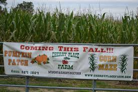 Patterson Pumpkin Patch Nc by 13 Pumpkin Patches To Visit In The Charlotte Area This Fall