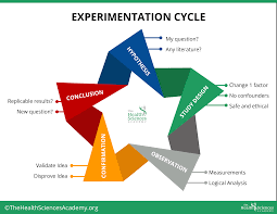 DOWNLOAD How To Conduct An Effective Self Experiment – The