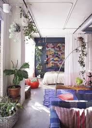 Plants Small Apartment Decorating Ideas Simple Gallery