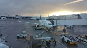 selection siege air transat rtw in only 737 ng aircraft flyertalk forums