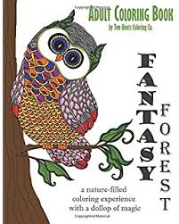 Adult Coloring Book Fantasy Forest Books Volume 2