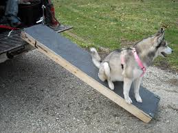 100 Dog Truck Ramp Best Design For Bravasdogs Home Blog The Best