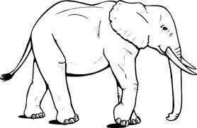 Full Size Of Coloring Pageelephant Color Page Cute Pages Elephant Big