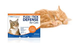 flea treatment for cats flea tick treatment for cats groupon goods