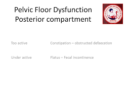 Pelvic Floor Dysfunction Symptoms Constipation by New Concepts And Techniques And Pursuing A Career In