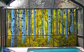Privacy Screen Patio Scences Mural screens for patios in Pinellas