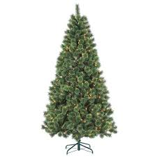 STERLING 7 Ft Pre Lit Hard Needle Deluxe Cashmere Artificial Christmas Tree With Clear