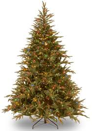 Twinkling Christmas Tree Lights Canada by Fraser 6 U0027 Green Artificial Christmas Tree With 800 Led Multi