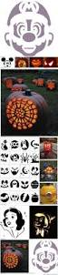 Owl Pumpkin Carving Templates Easy by 22 Best Pumpkin Carving Images On Pinterest Halloween Pumpkins
