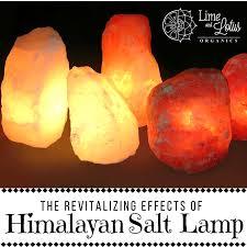 Himalayan Ionic Salt Lamp by 10 Reasons You Need A Himalayan Salt Lamp At Home U2014 Lime And Lotus