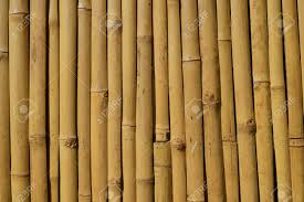 100 Bamboo Walls Natural Stock Photo Picture And Royalty Free Image