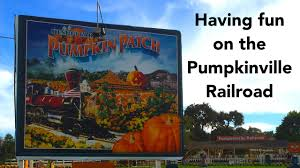 Canby Pumpkin Patch by Taking The Train At The Uesugi Pumpkin Patch Youtube