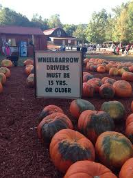 Kingsway Pumpkin Farm Hours by Burt U0027s Pumpkin Patch Favorite Places U0026 Spaces Pinterest