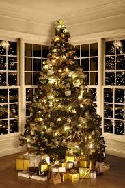 Ferrero Rocher Christmas Tree Diy by 24 Best Rocher Through It U0027s Fans Eyes Images On Pinterest