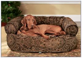 bowsers pet products double donut dog bed