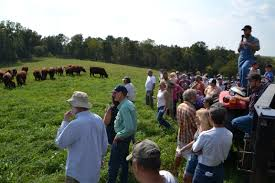 Field Day Recap: Regenerative Grazing To Produce Gourmet Grass-Fed ... 2009 Dodge Laramie 5500 Work Truck Review 8lug Magazine Diecast Car Forums Pics Hostetlers Hudsons 1940 Zone The Auburn Auction 2018 Worldwide Auctioneers Gmc Cckw353 Pton Bolster Truck Military Vehicles Pinterest Hudson Ksffas Fire News Blog Dicated To The Safety Education Of Carhunter Hudsons In Ipshewana Bowersox Repair Towing Services Milroy Pa Ricks Home Facebook