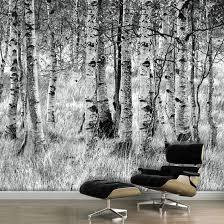 birkenwald tapete birken wald birkenwald tapeten