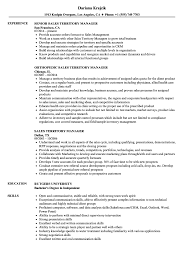 Download Sales Territory Manager Resume Sample As Image File