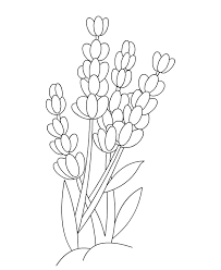 Flower Coloring Pages For Children