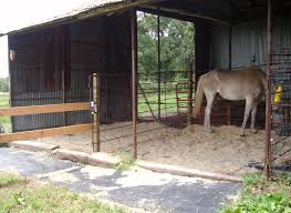 Loafing Shed Plans Portable by Barn Design Loafing Shed Off Side Of Barn Horse Ideology