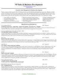 Business Development Executive Resume Format Valuable International Sample Fieldstatio 8467