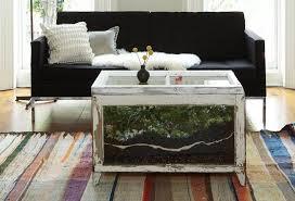 37 ideen für zimmerpflanzen deko kreative behälter und