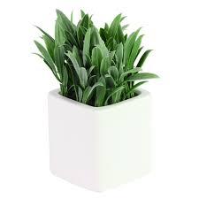 blumen in einem dekorativen topf für ein badezimmer künstliche pflanze für einen balkon atmosphera