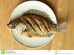 Nile Tilapia Or Oreochromis Niloticus Fied On White Dish