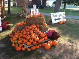 Pumpkin Picking Richmond by 7 Best Pumpkin Patches In Virginia