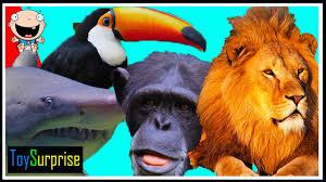 Animales Salvajes Para Colorear 2 Dibujos Online