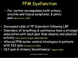 Pelvic Floor Dysfunction Symptoms Constipation by Male Pelvic Floor Dysfunction In Elite Sport