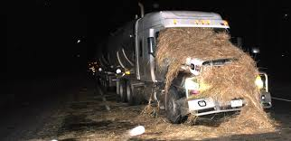 Round Bale Falls Off Truck, Hits A Semi On Hwy 21 – Stettler Independent Australian Car Crash Dash Cam Compilation 8 Video Dailymotion Buying Guide Leading Dashboard Cameras Dashcams Reviewed Installing A Tesla Model 3 Dashcam Solution From Blackvue 11 Best Cams On Amazon 2018 Truck Crashes Compilation 2017 Accidents Truck In Trucks Terrifying Dashcam Footage Shows Spectacular Near Miss In Semitruck Dashboard Camera With Motion Detection Products Buyers Guide The Dashcam Store Trucker Laughs Hysterically After Kids Learn Hard Way Deal Sales Home Facebook