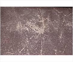 canapé cuir qui colle reparation canape cuir améliorer la première impression digi