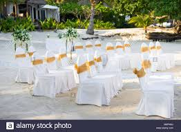 A Group Of White Spandex Chairs Cover With Gold Organza Sash ... Lv50pcs Wedding Chair Sashes Bows Elastic Spandex S Atoz Home Furnishings On Twitter Give Those Plain Looking Covers And Gold 10pcs Bowknot Designed Ribbon Sash Hotel Banquet Cover Back Decoration Sky Blue Satin Bow Party Elegant Hire From Firstlinen Price Chair Covers Zoom In Folding Banquet Lanns Linens 10 Organza Weddingparty Sashesbows Tie Ivory 10pcs Anniversary Bands Decorrose Red Details About 50 Caps Toppers Lace Handmade White Coral Salmon New 100pcs Cadbury Purple Homehotel