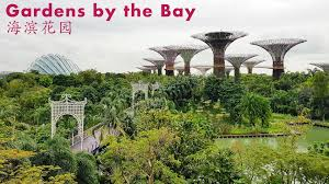 A Vision from the Future Gardens by the Bay Singapore 新加坡