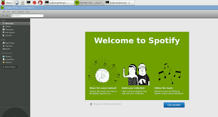 how to stop spotify from opening on startup ru teamviewer на raspberry pi