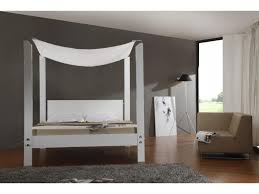 Canopy Bed Queen by Queen Canopy Beds Amazing Queen Canopy Bed Ideas U2013 Home Design